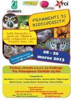Frammenti di Biodiversita'