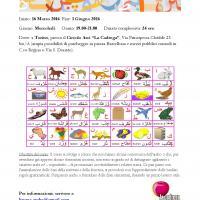 Corso di lingua araba- Livello principainti